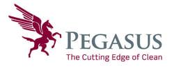 Pegasus-Logo-Hero
